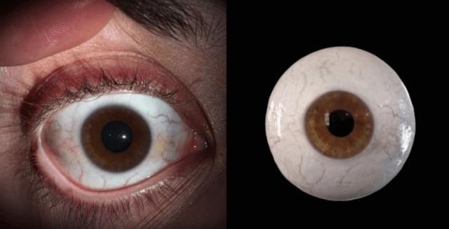 眼睛建模逐步剖析教学-超详细